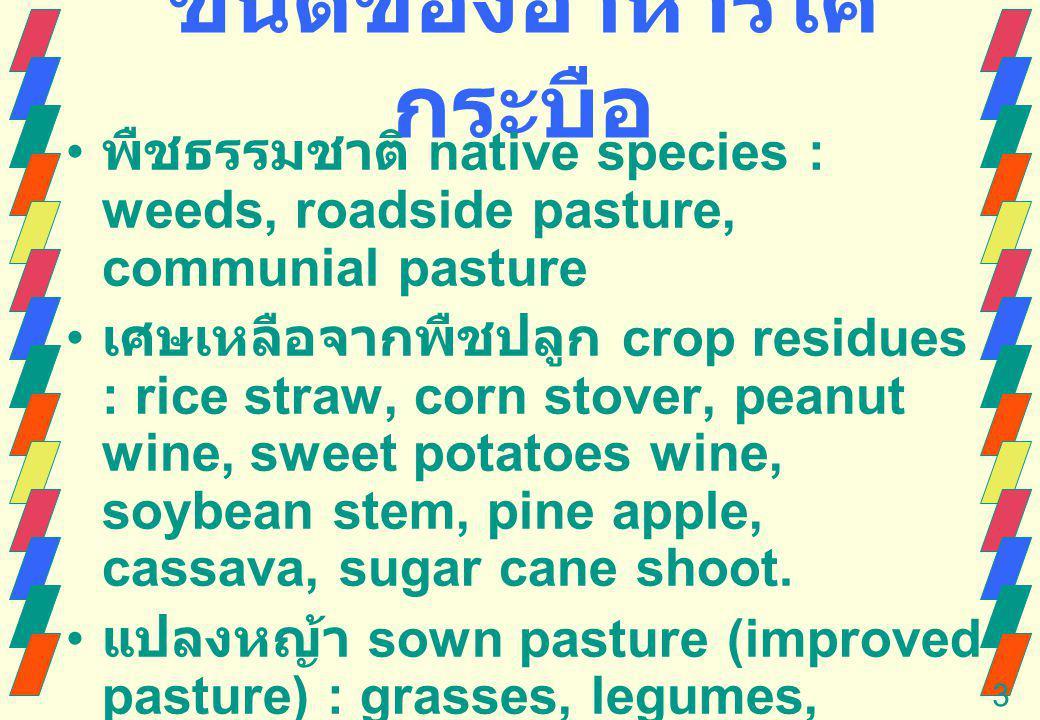 3 native species : weeds, roadside pasture, communial pasture crop residues : rice straw, corn stover, peanut wine, sweet potatoes wine, soybean stem, pine apple, cassava, sugar cane shoot.