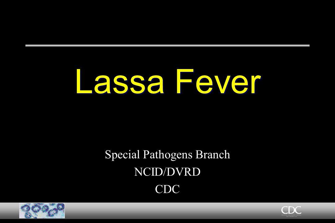 Lassa Fever Special Pathogens Branch NCID/DVRD CDC Special Pathogens Branch NCID/DVRD CDC