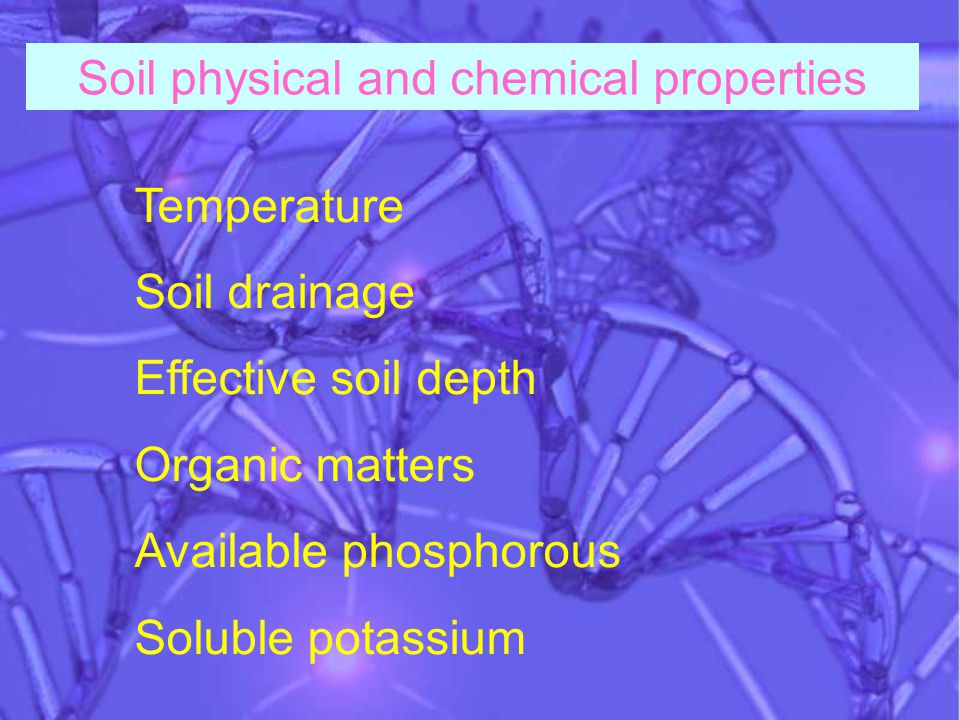 Temperature Soil drainage Effective soil depth Organic matters Available phosphorous Soluble potassium Soil physical and chemical properties