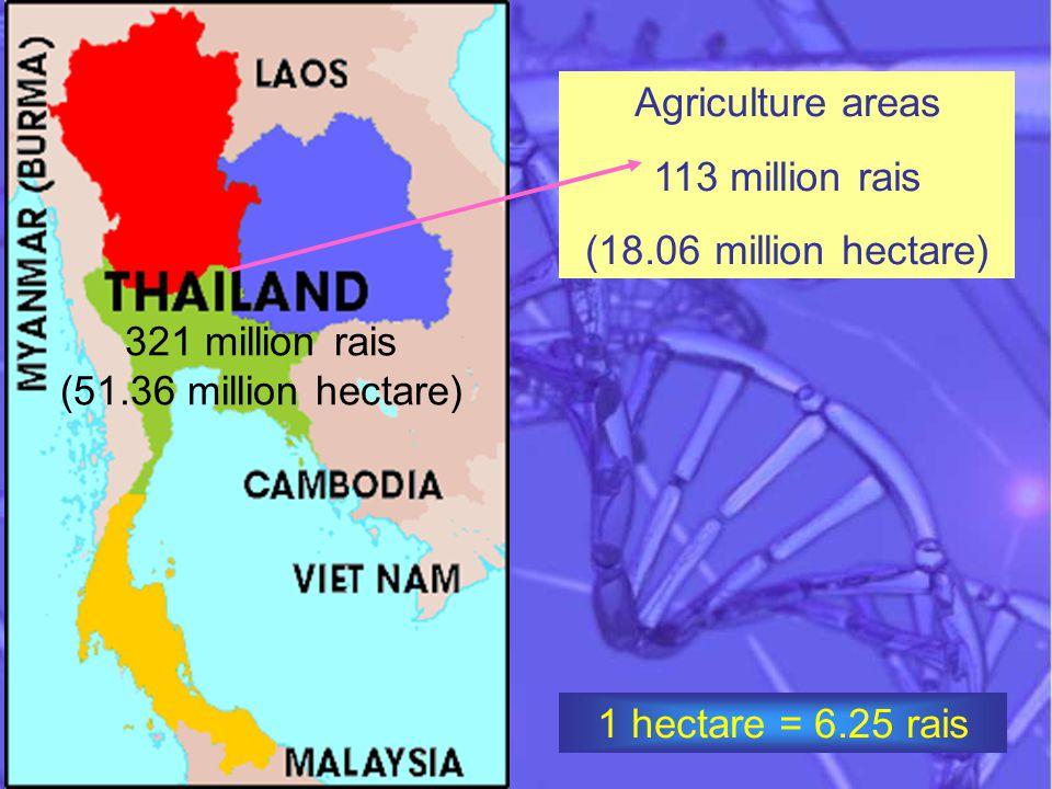 Agriculture areas 113 million rais (18.06 million hectare) 321 million rais (51.36 million hectare) 1 hectare = 6.25 rais