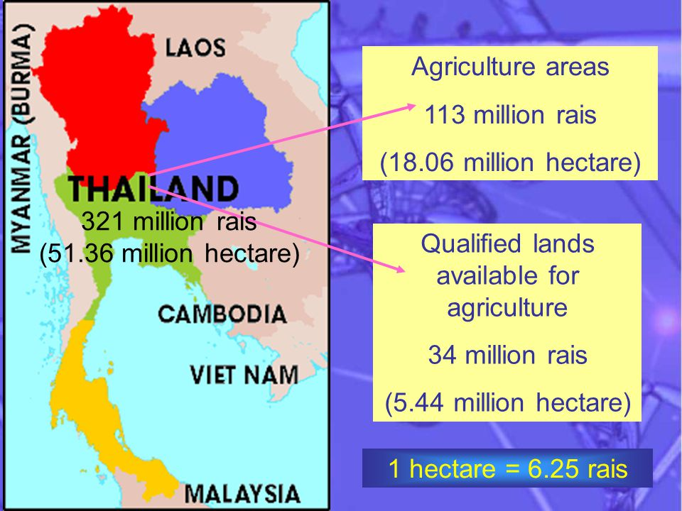 Qualified lands available for agriculture 34 million rais (5.44 million hectare) Agriculture areas 113 million rais (18.06 million hectare) 321 million rais (51.36 million hectare) 1 hectare = 6.25 rais