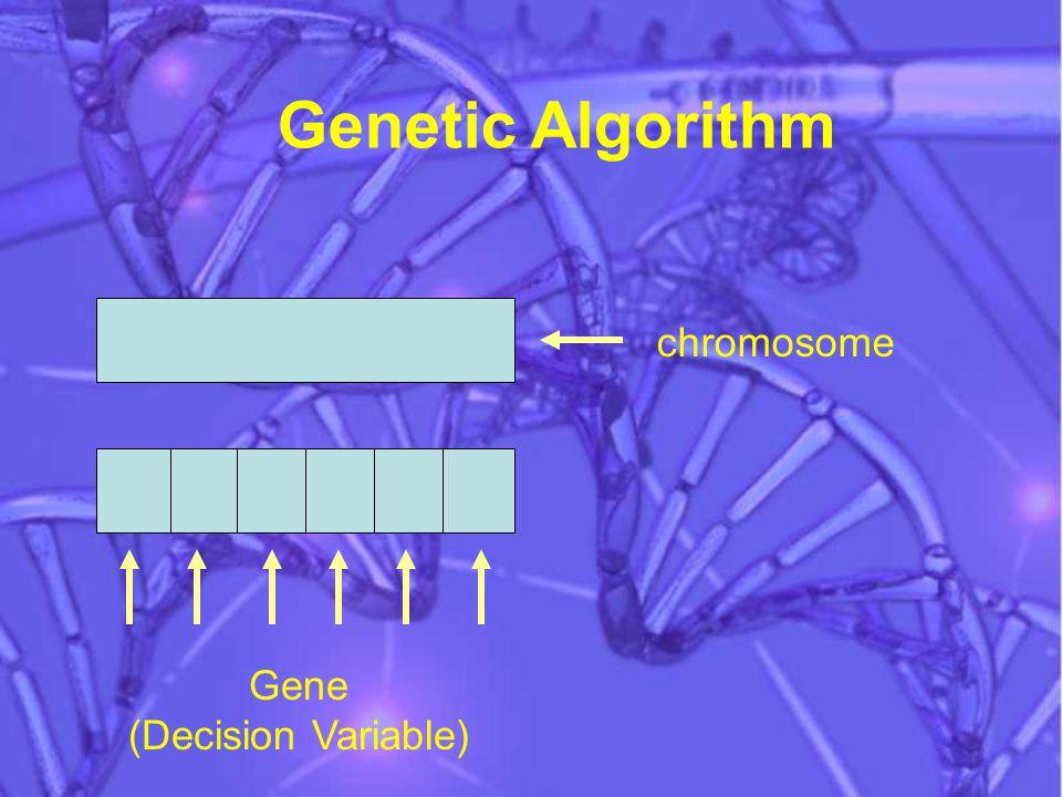 Genetic Algorithm chromosome Gene (Decision Variable)