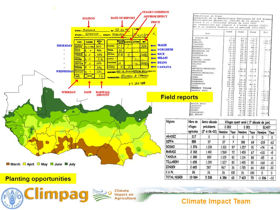 Climate Impact Team Planting opportunities Field reports