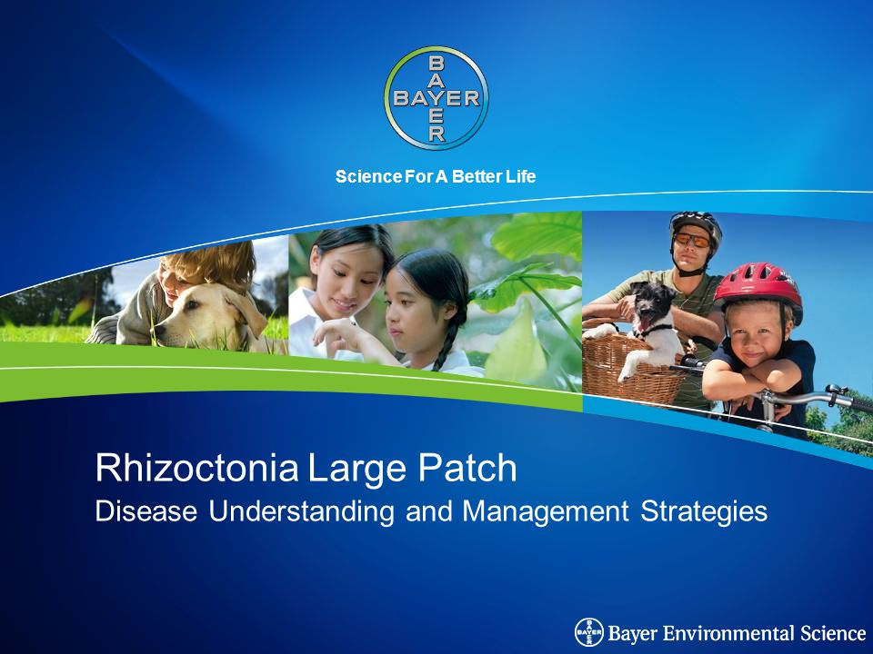 Science For A Better Life Rhizoctonia Large Patch Disease Understanding and Management Strategies