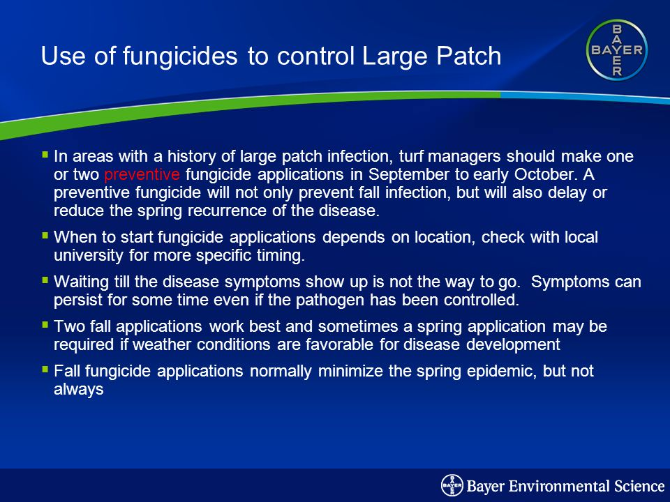 Use of fungicides to control Large Patch In areas with a history of large patch infection, turf managers should make one or two preventive fungicide applications in September to early October.