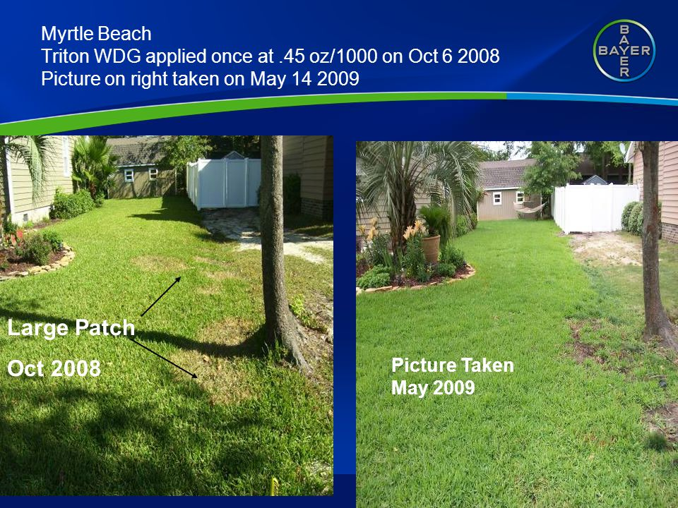 Myrtle Beach Triton WDG applied once at.45 oz/1000 on Oct 6 2008 Picture on right taken on May 14 2009 Large Patch Oct 2008 Picture Taken May 2009