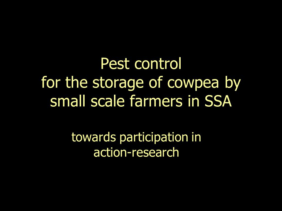 The project Organisations –DfID –NRI, MOFA, SARI, NGOs, Farmers unions… Duration Research to Action-research & Participatory research Cowpea ( Black-eye bean ) –Traditional - widespread –Beans, leaves, fodder –Adapted – drought, poor soil Storage on farm Pest damage Adapted solution –Effective –Safe –Affordable –Acceptable