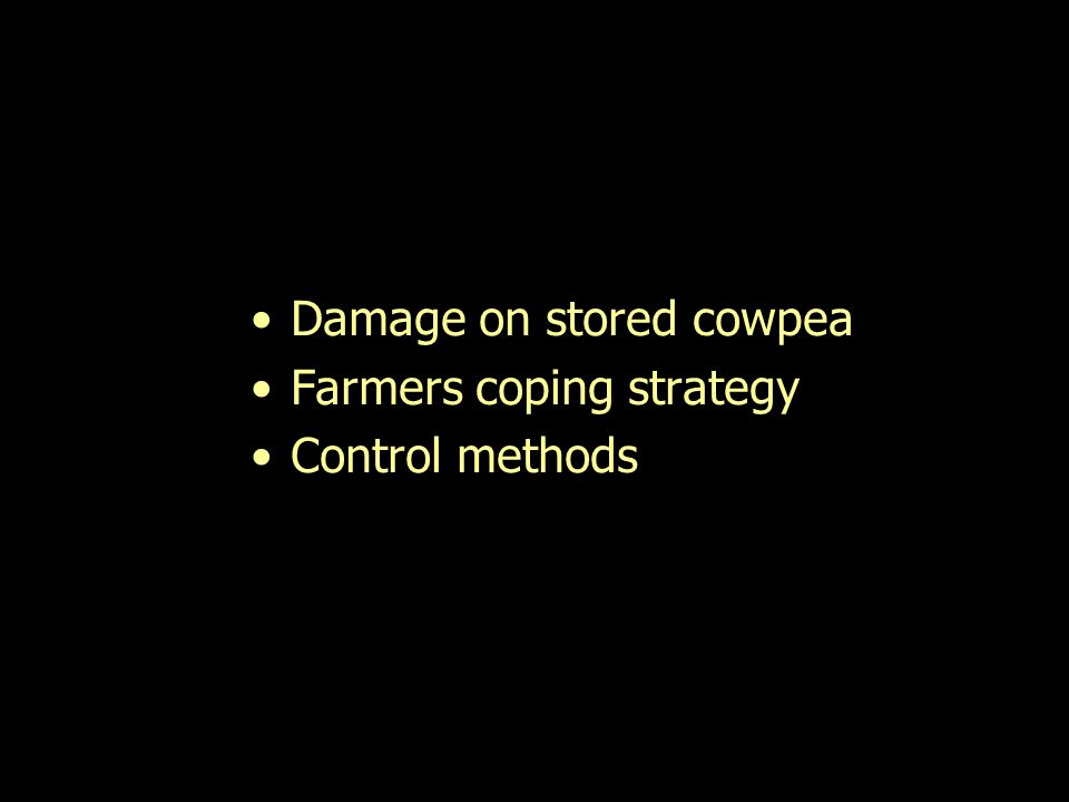 Damage on stored cowpea Farmers coping strategy Control methods