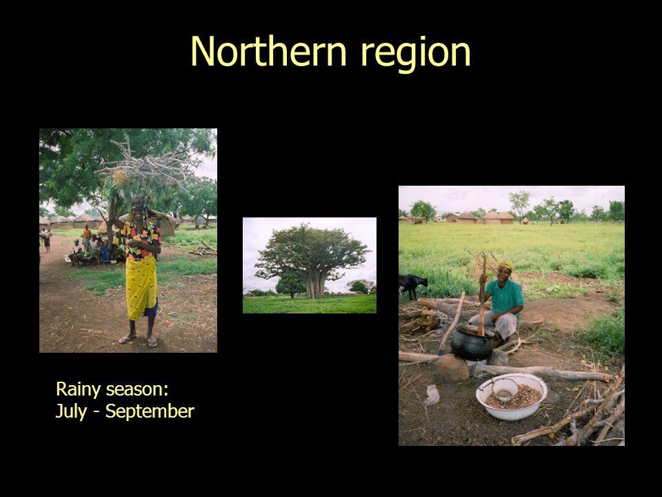 0 25 50 75 100 JanFebMarAprMayJunJul Surveys Damage on stored cowpea in the Northern Region during the storage season 97-98: 131 farmers
