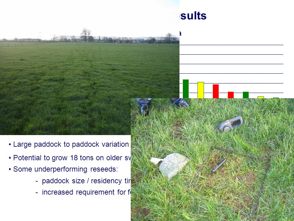 Grass Growth Results tons DM/ha/yr 2008: 15,964 kg DM/ha Large paddock to paddock variation unexplained by soil fertility Potential to grow 18 tons on