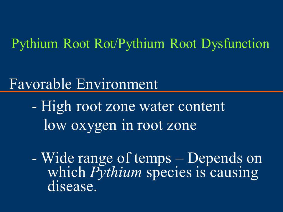 Favorable Environment - High root zone water content low oxygen in root zone - Wide range of temps – Depends on which Pythium species is causing disea