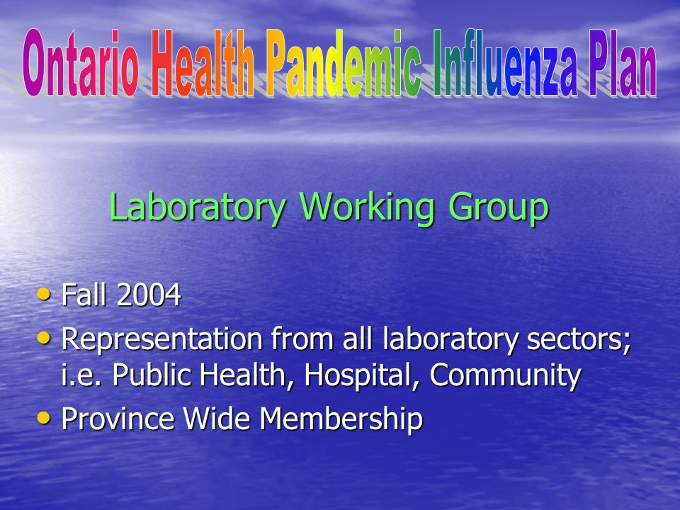 Laboratory Working Group Fall 2004 Fall 2004 Representation from all laboratory sectors; i.e.