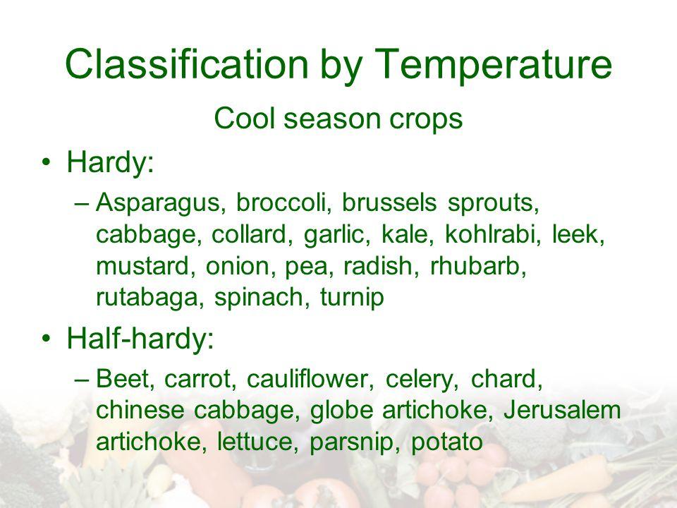 Classification by Temperature Cool season crops Hardy: –Asparagus, broccoli, brussels sprouts, cabbage, collard, garlic, kale, kohlrabi, leek, mustard