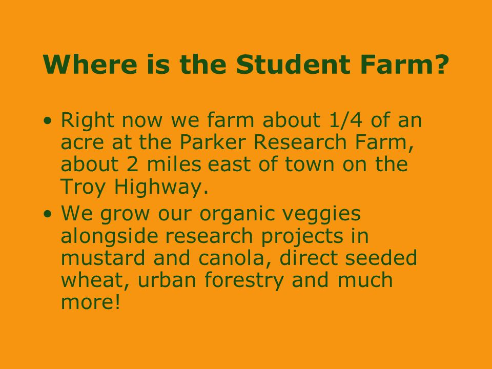 Where is the Student Farm? Right now we farm about 1/4 of an acre at the Parker Research Farm, about 2 miles east of town on the Troy Highway. We grow