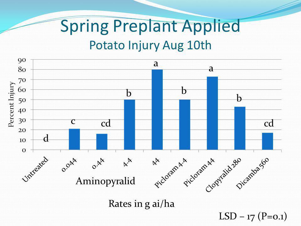 Spring Preplant Applied Potato Injury Aug 10th LSD – 17 (P=0.1) Rates in g ai/ha Aminopyralid Percent Injury a a b b b c cd d