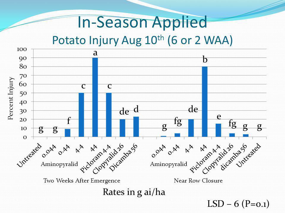 In-Season Applied Potato Injury Aug 10 th (6 or 2 WAA) LSD – 6 (P=0.1) Rates in g ai/ha Aminopyralid Two Weeks After EmergenceNear Row Closure Percent Injury a b c f gg c de d g fg de e fg gg