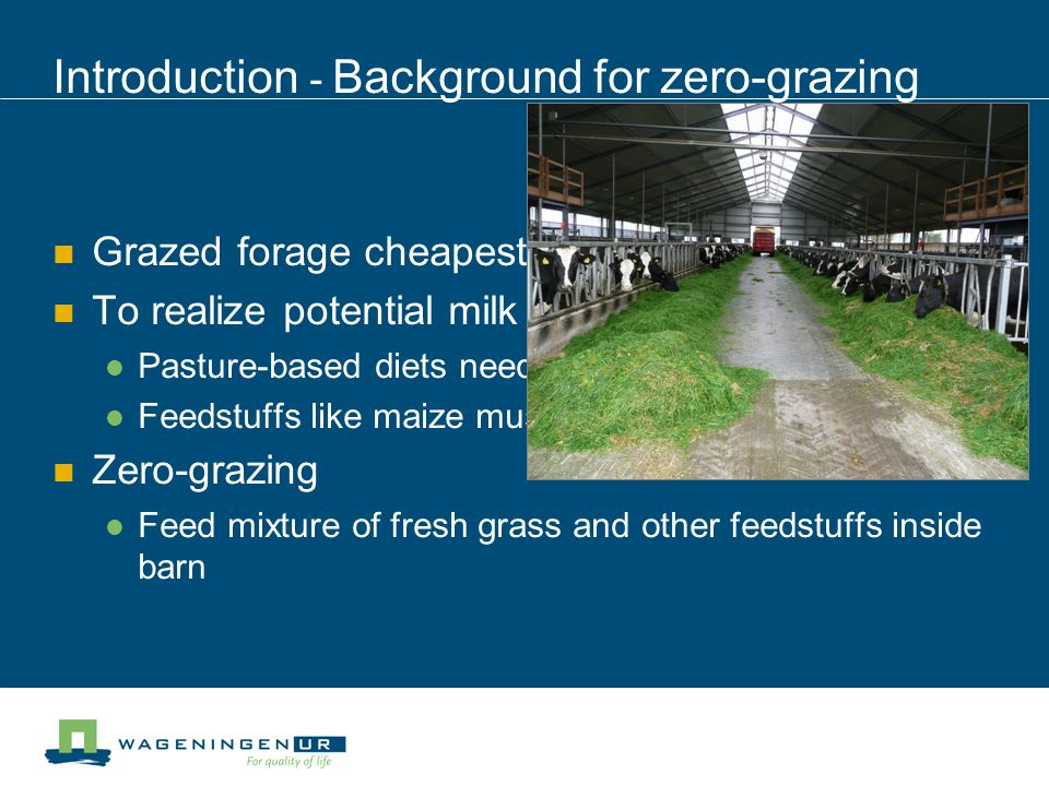 Introduction - Drawbacks of zero-grazing Fresh grass Spoils rapidly Is voluminous Needs to be collected and distributed twice a day Rigid time schedule High labour requirement