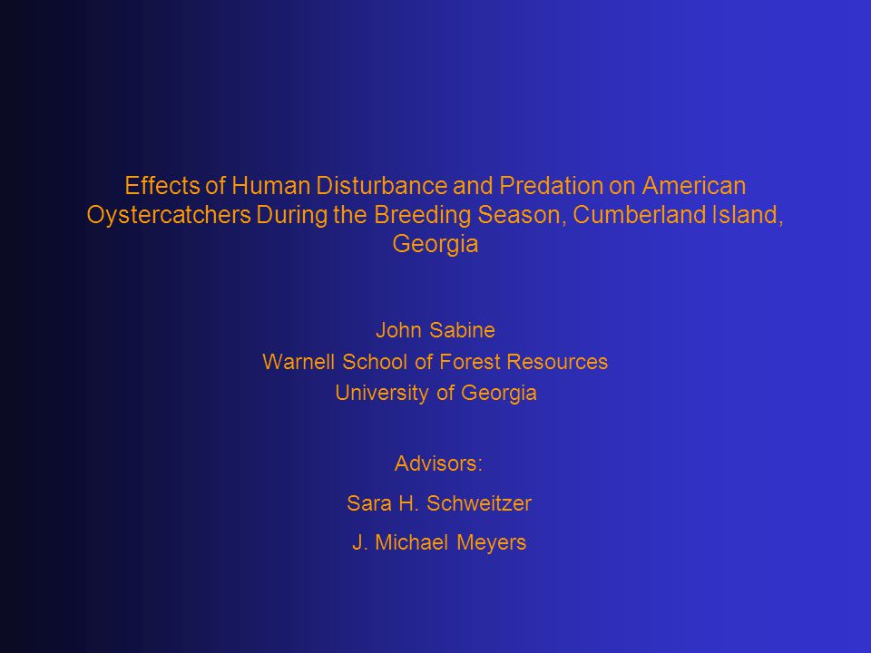 Effects of Human Disturbance and Predation on American Oystercatchers During the Breeding Season, Cumberland Island, Georgia John Sabine Warnell School of Forest Resources University of Georgia Advisors: Sara H.