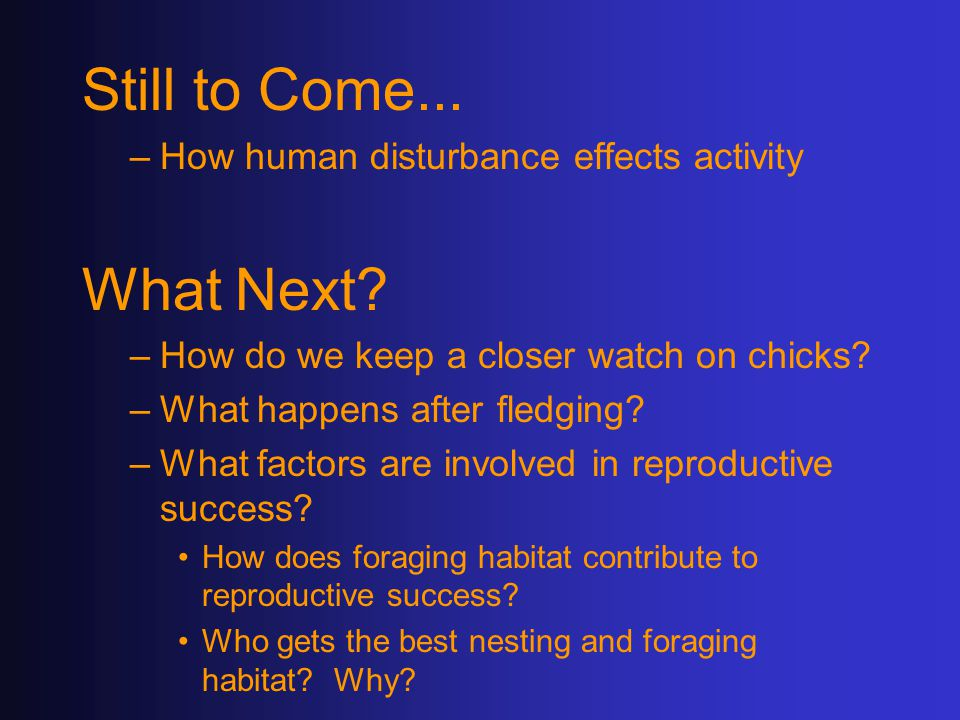 Still to Come... –How human disturbance effects activity What Next.