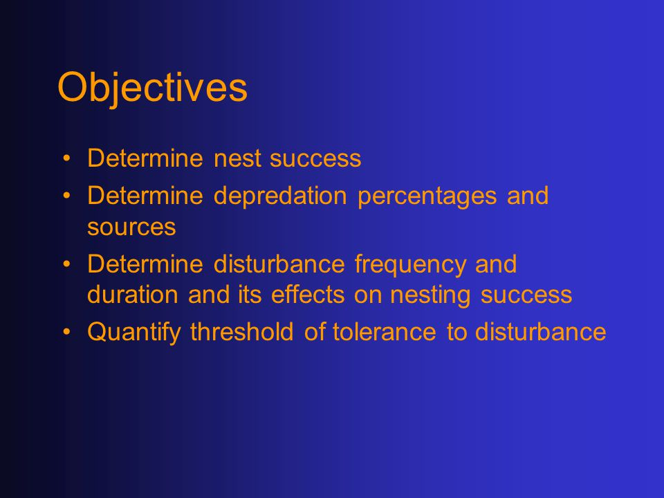Objectives Determine nest success Determine depredation percentages and sources Determine disturbance frequency and duration and its effects on nesting success Quantify threshold of tolerance to disturbance