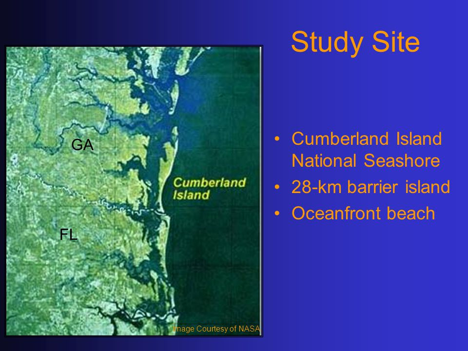 Study Site Cumberland Island National Seashore 28-km barrier island Oceanfront beach Image Courtesy of NASA GA FL