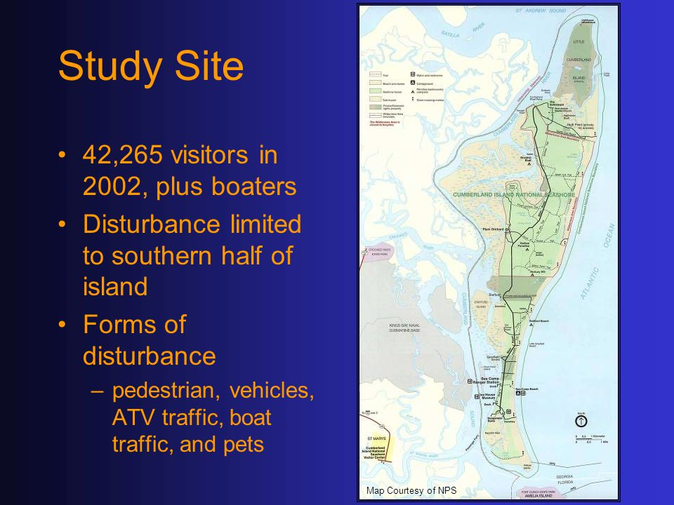 Study Site 42,265 visitors in 2002, plus boaters Disturbance limited to southern half of island Forms of disturbance –pedestrian, vehicles, ATV traffic, boat traffic, and pets Map Courtesy of NPS