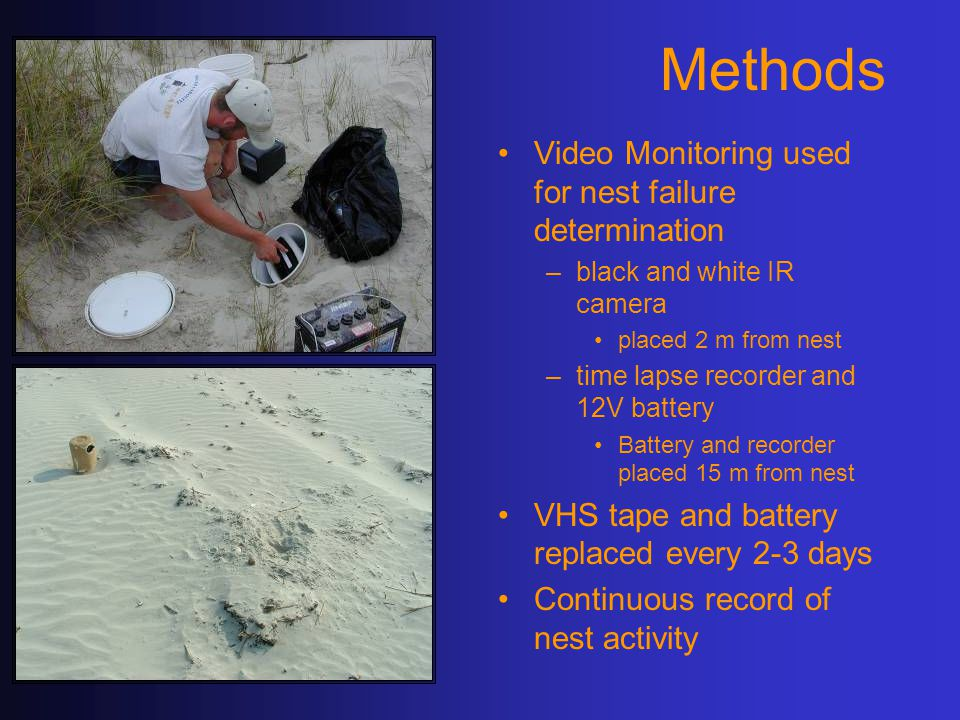 Methods Video Monitoring used for nest failure determination –black and white IR camera placed 2 m from nest –time lapse recorder and 12V battery Battery and recorder placed 15 m from nest VHS tape and battery replaced every 2-3 days Continuous record of nest activity