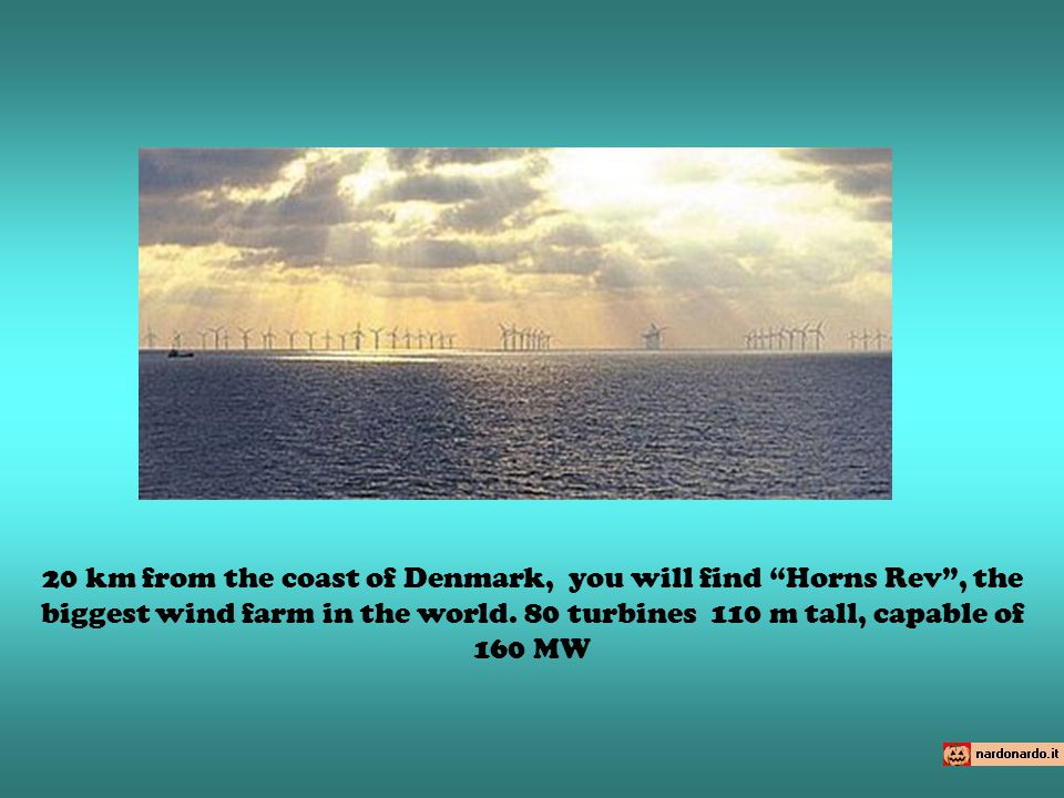 20 km from the coast of Denmark, you will find Horns Rev, the biggest wind farm in the world.