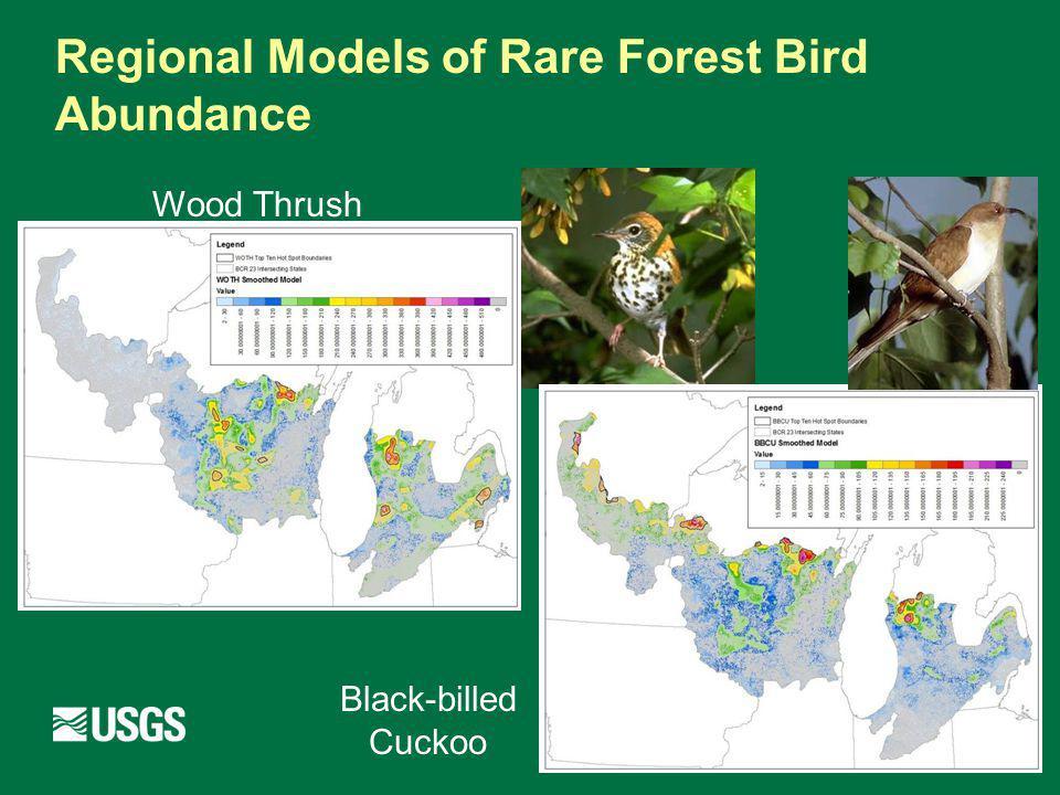 Regional Models of Rare Forest Bird Abundance Wood Thrush Black-billed Cuckoo