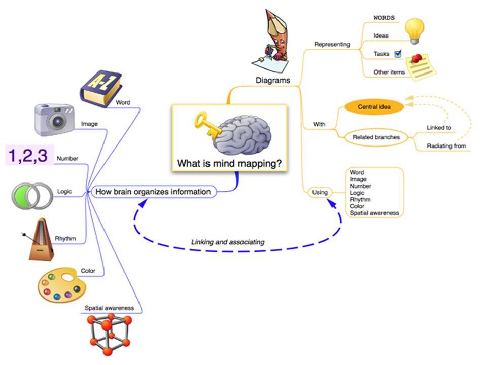 Mind Mapping is a powerful but simple way of using diagrams to show information in the same way you think.