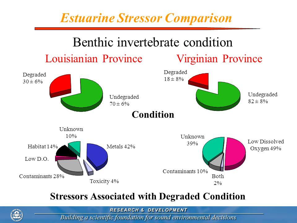 Estuarine Stressor Comparison Degraded 30 ± 6% Undegraded 70 ± 6% Degraded 18 ± 8% Undegraded 82 ± 8% Louisianian ProvinceVirginian Province Metals 42