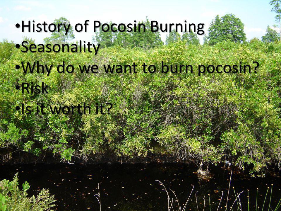 History of Pocosin Burning History of Pocosin Burning Seasonality Seasonality Why do we want to burn pocosin.