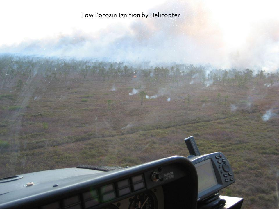 Low Pocosin Ignition by Helicopter
