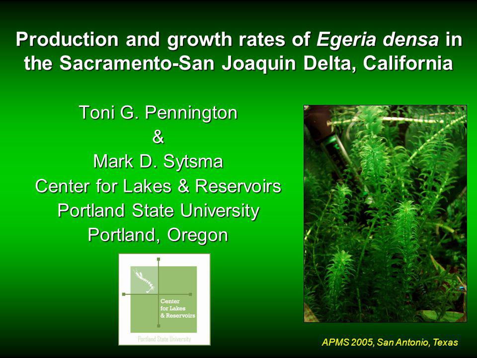 APMS 2005, San Antonio, Texas Production and growth rates of Egeria densa in the Sacramento-San Joaquin Delta, California Toni G.