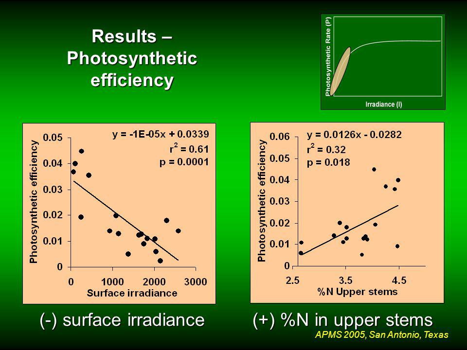 APMS 2005, San Antonio, Texas Results – Photosynthetic efficiency (-) surface irradiance (+) %N in upper stems