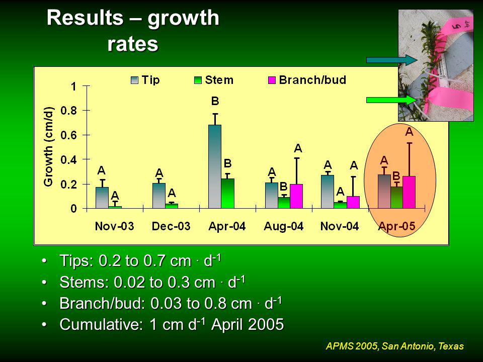 APMS 2005, San Antonio, Texas Results – growth rates Tips: 0.2 to 0.7 cm.
