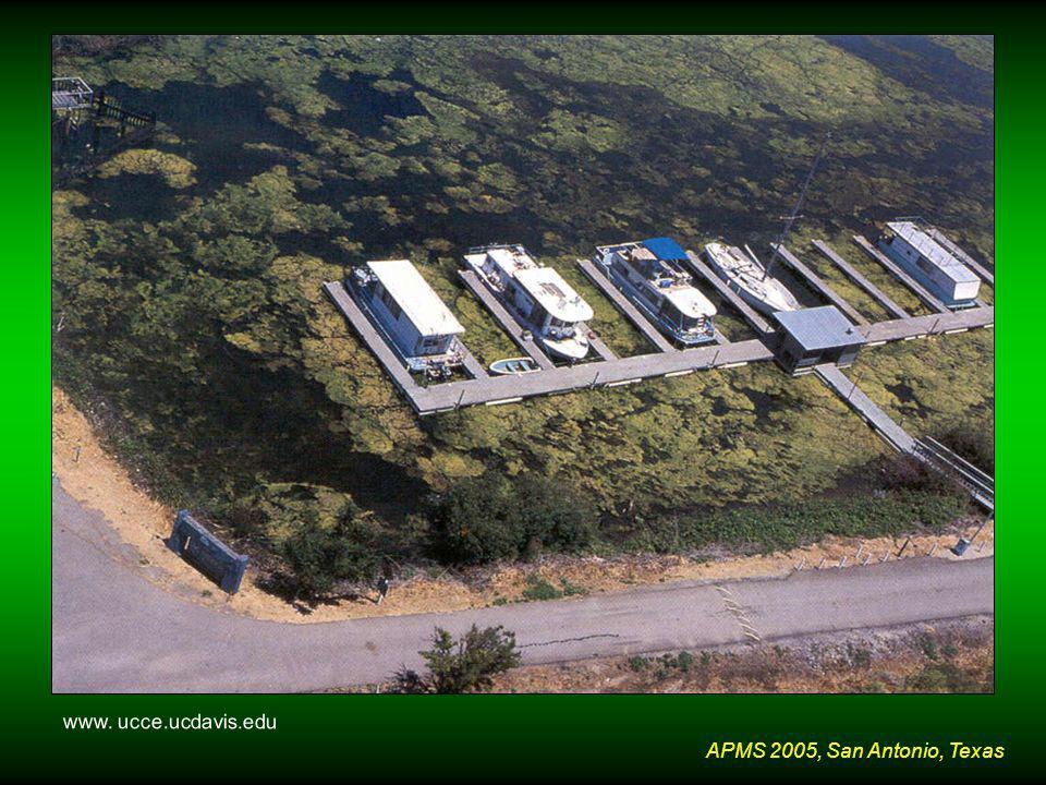 APMS 2005, San Antonio, Texas www. ucce.ucdavis.edu