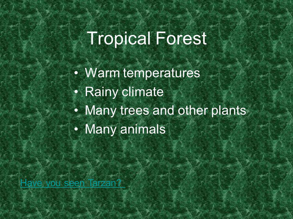 Tropical Forest Warm temperatures Rainy climate Many trees and other plants Many animals Have you seen Tarzan?