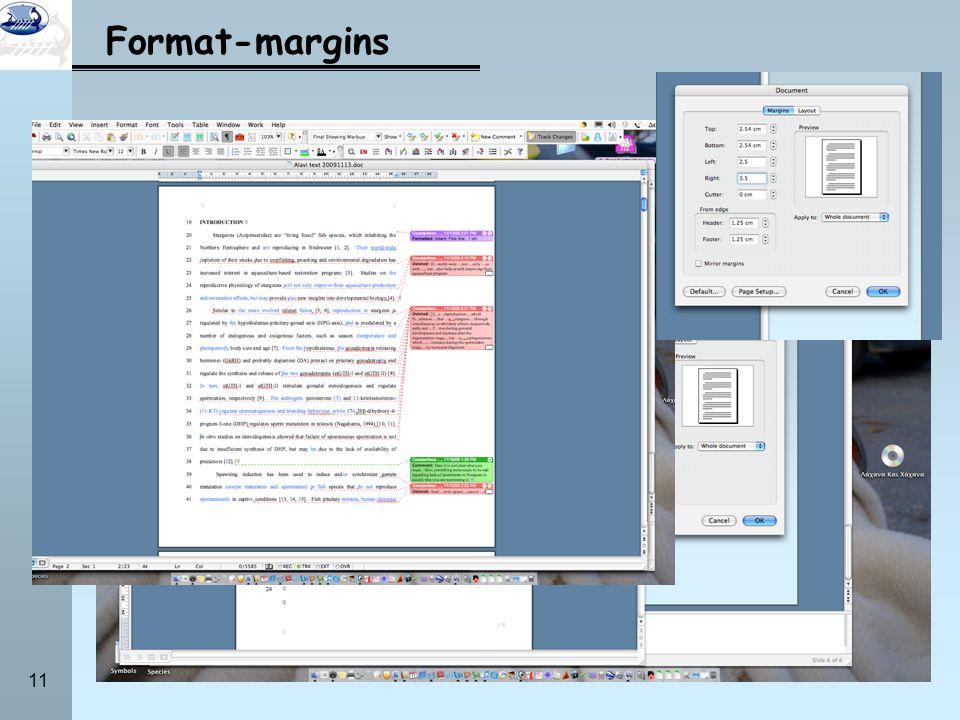 11 Format-margins