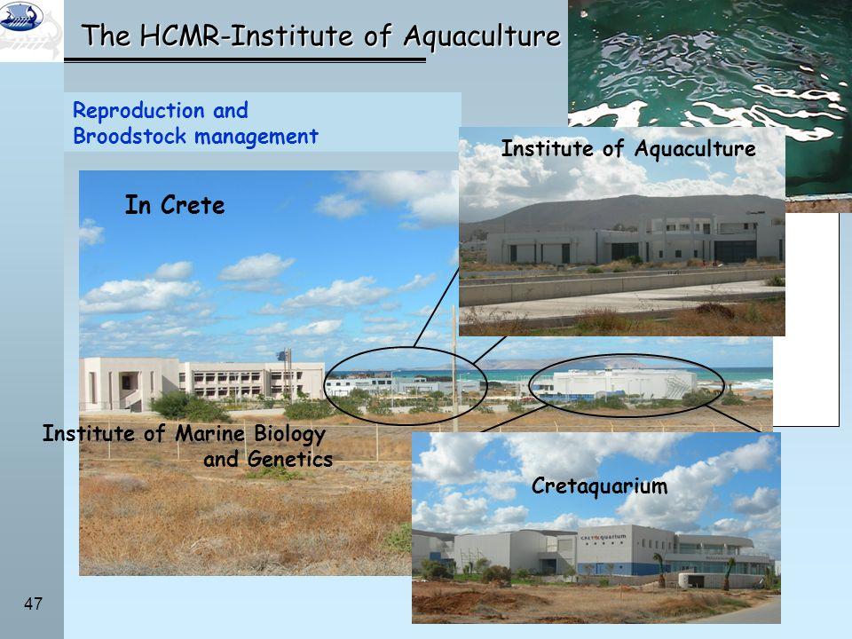 47 The HCMR-Institute of Aquaculture Five research institutes –Institute of Aquaculture –Institute of Marine Biology and Genetics –Institute of Oceano