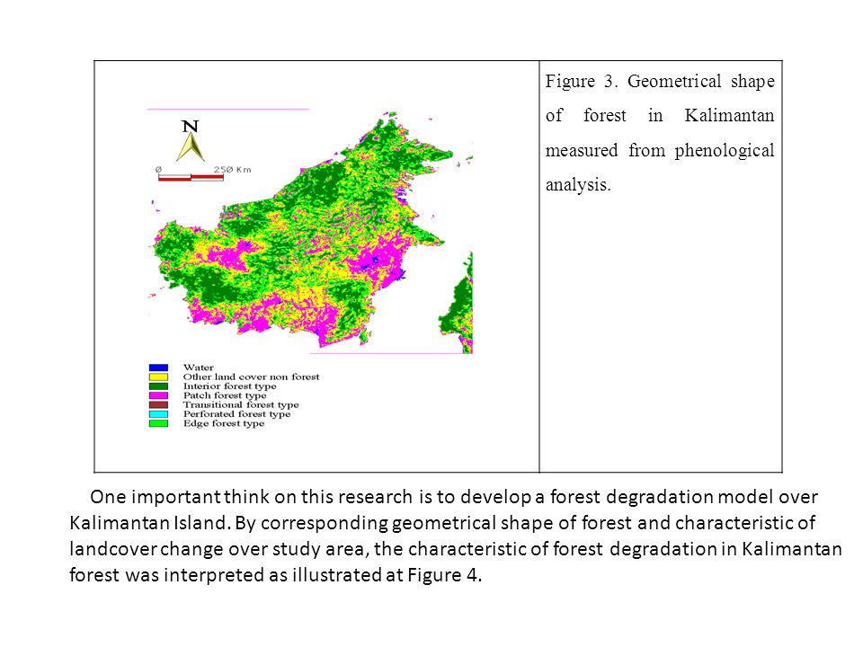 Figure 3. Geometrical shape of forest in Kalimantan measured from phenological analysis.