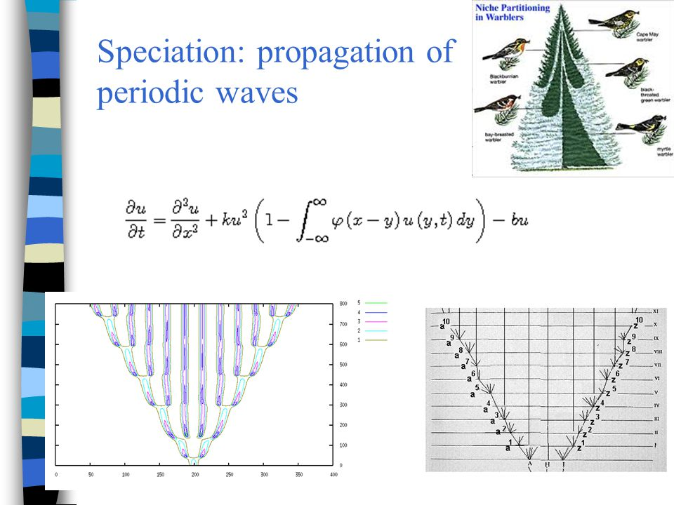Speciation: propagation of periodic waves