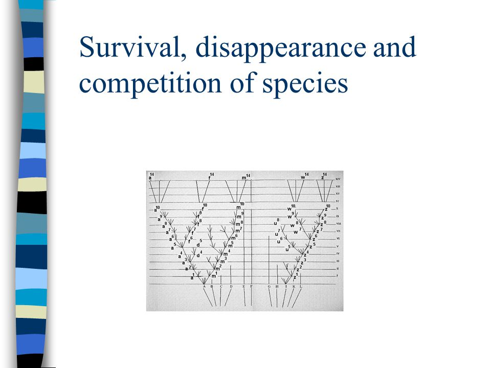 Survival, disappearance and competition of species