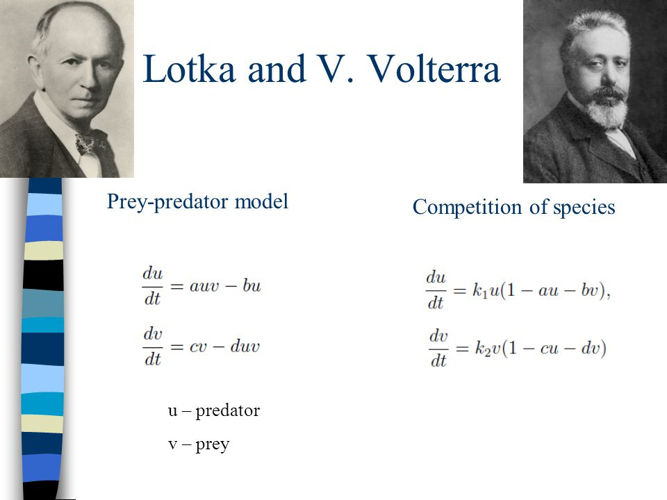 A. Lotka and V. Volterra Prey-predator model Competition of species u – predator v – prey