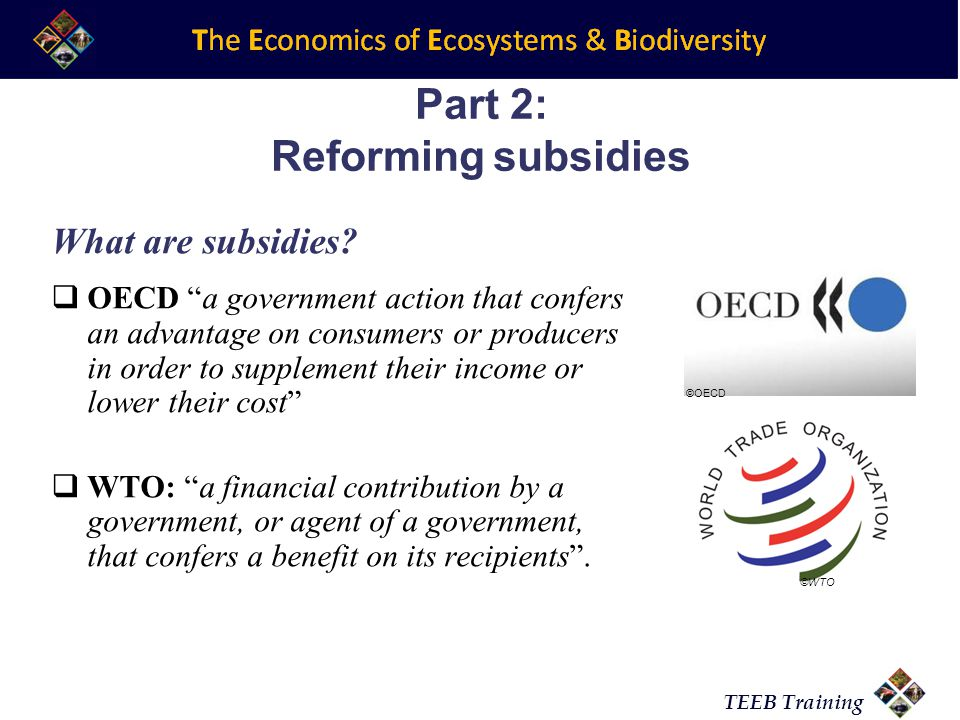 TEEB Training Part 2: Reforming subsidies What are subsidies.