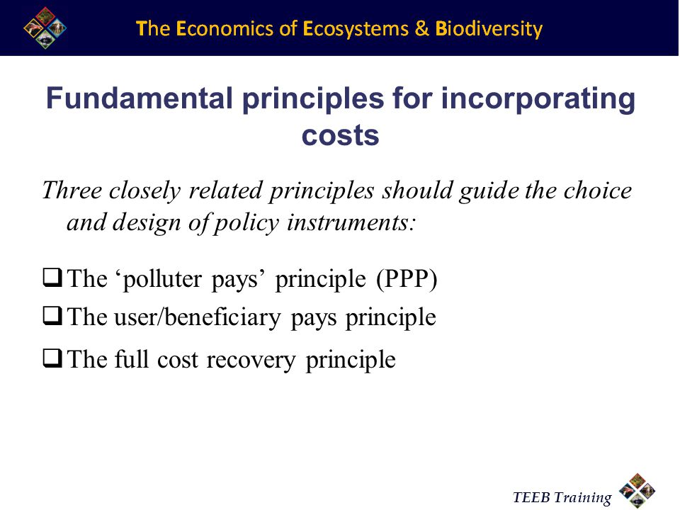 TEEB Training Fundamental principles for incorporating costs Three closely related principles should guide the choice and design of policy instruments: The polluter pays principle (PPP) The user/beneficiary pays principle The full cost recovery principle