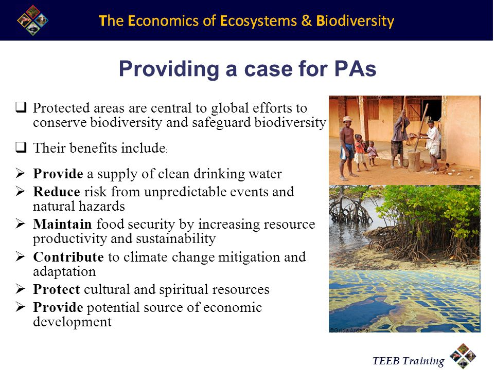 TEEB Training Providing a case for PAs Protected areas are central to global efforts to conserve biodiversity and safeguard biodiversity Their benefits include : Provide a supply of clean drinking water Reduce risk from unpredictable events and natural hazards Maintain food security by increasing resource productivity and sustainability Contribute to climate change mitigation and adaptation Protect cultural and spiritual resources Provide potential source of economic development ©Grida Ardenal