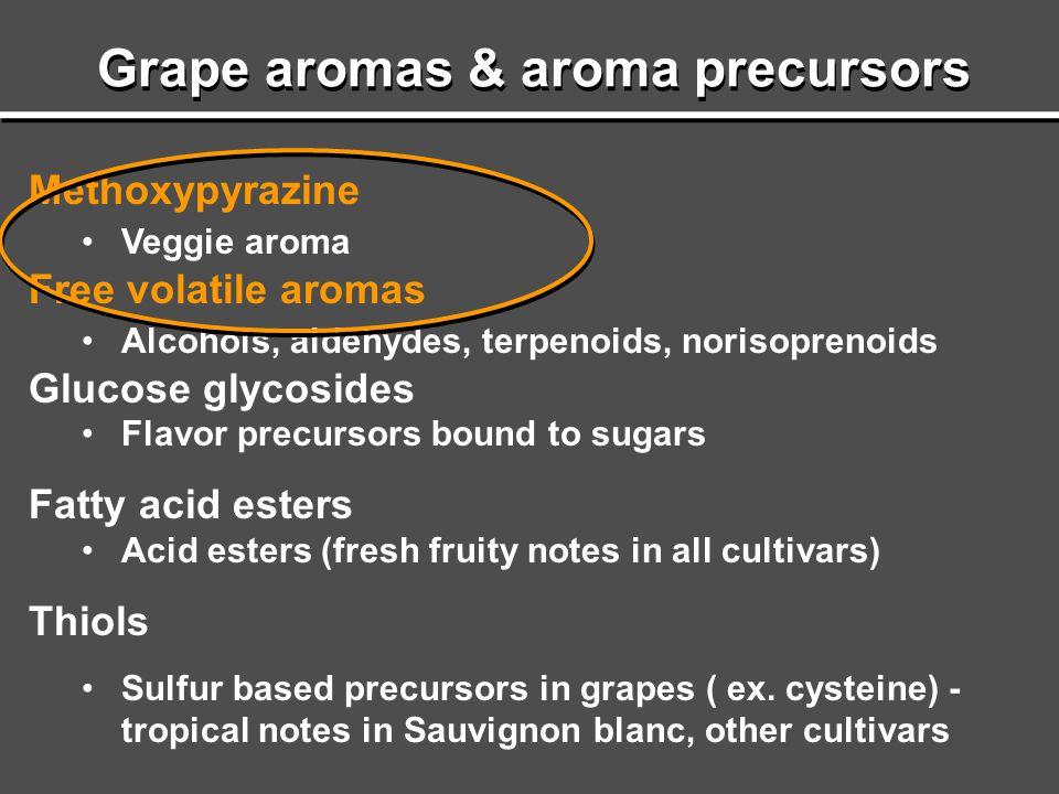 Grape aromas & aroma precursors Methoxypyrazine Veggie aroma Free volatile aromas Alcohols, aldehydes, terpenoids, norisoprenoids Glucose glycosides F