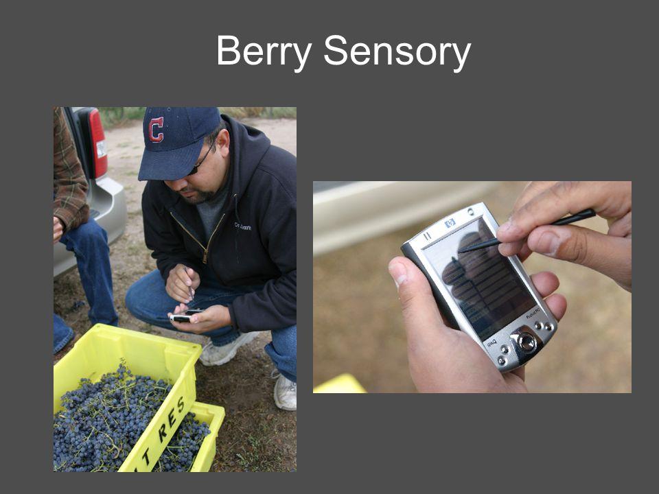 Berry Sensory