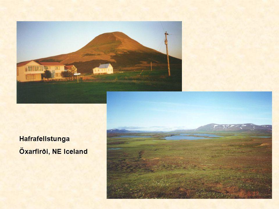 Hafrafellstunga Öxarfirði, NE Iceland
